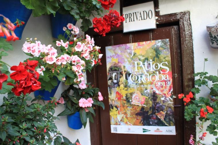 Patio Festival